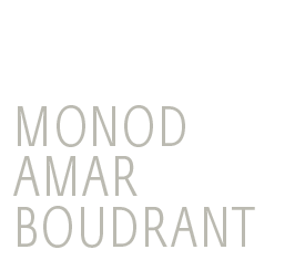 Monod Amar Boudrant - Association d'avocats